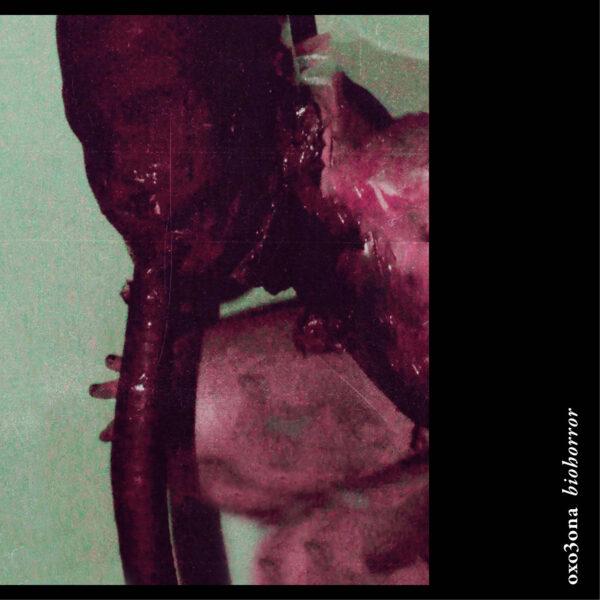 oxo3ona24 1 S A N R I | biohorror