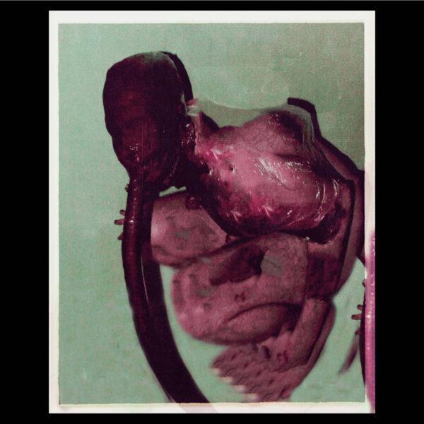 oxo3ona25 1 S A N R I | biohorror