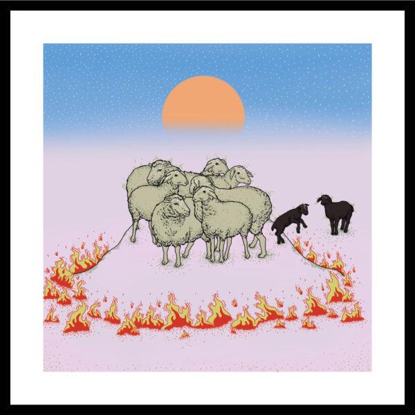simay bahçivan6 SANRI   black sheep